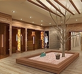 Sauna wellness interior design