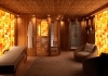 Wellness room with sauna and shower